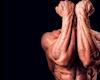 2 bài tập đơn giản tăng sức mạnh cổ tay giúp tập luyện tốt hơn