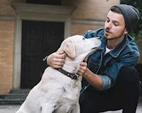7 bí quyết giúp đàn ông hiện đại làm quen với một chú chó