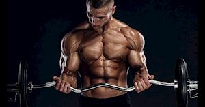 8 bài tập tăng cơ tay giúp tay to và rắn chắc hơn