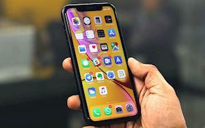 Đã có thể mua một chiếc iPhone XR được sản xuất tại Ấn Độ?