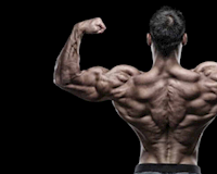 Cơ lưng dày hơn chỉ với 3 bài tập đơn giản