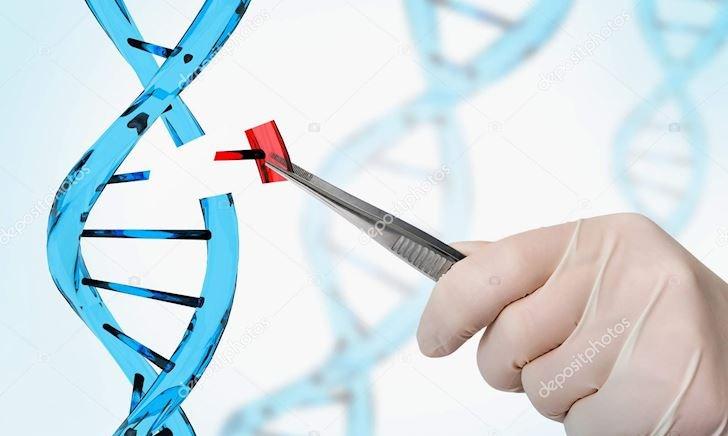Trí tuệ nhân tạo được ứng dụng vào giải mã gene người