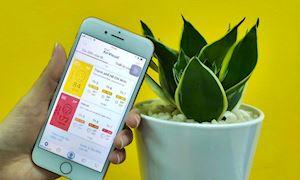Dễ dàng kiểm tra độ ô nhiễm các thành phố bạn sắp đến du lịch trên smartphone