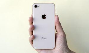 Tin đồn: iPhone SE 2 sẽ có 'hồn' iPhone 2019, 'da' iPhone 2017, lên kệ 2020?