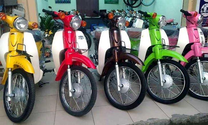 Honda Cub 50cc chinh hang gia cuc cao khi ve Viet Nam 5