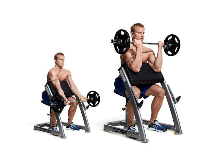 Bodybuilding.Tip.thiet.bi.phong.gym.va.tac.dung.cua.chung.len.tung.nhom.co.anh3