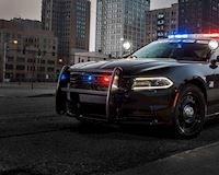 6 cách cảnh sát Mỹ xử lý vi phạm đối với các tài xế