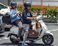 Singapore cấm hoàn toàn xe máy cũ vào năm 2028