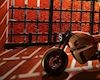 Chiếc Nawa Racer chạy bằng siêu tụ điện đầu tiên trên thế giới