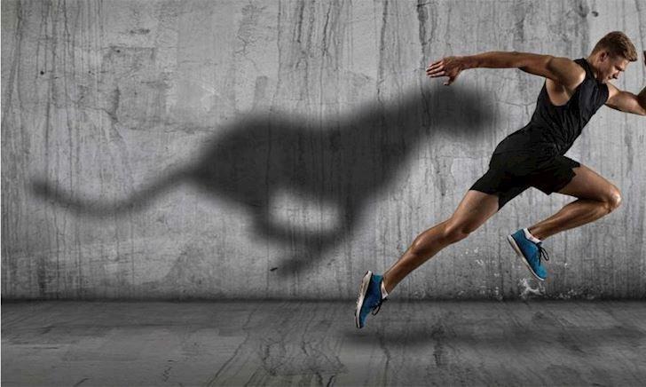 14 bài tập Cardio nâng cao cho nam giới tinh thần thép (Phần 1)
