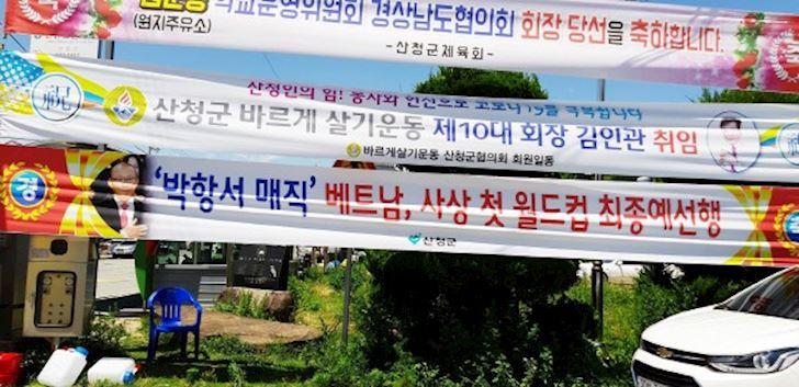 Dan-Han-Quoc-treo-hinh-HLV-Park-Hang-seo-mung-tuyen-Viet-Nam-di-tiep-1
