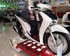 Bất chấp ảnh hưởng từ 'cô vy', người Việt mua xe tay ga cao cấp nhiều hơn
